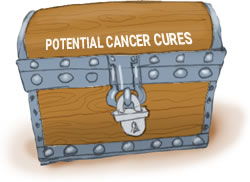Treasure Chest Of Cancer Cures